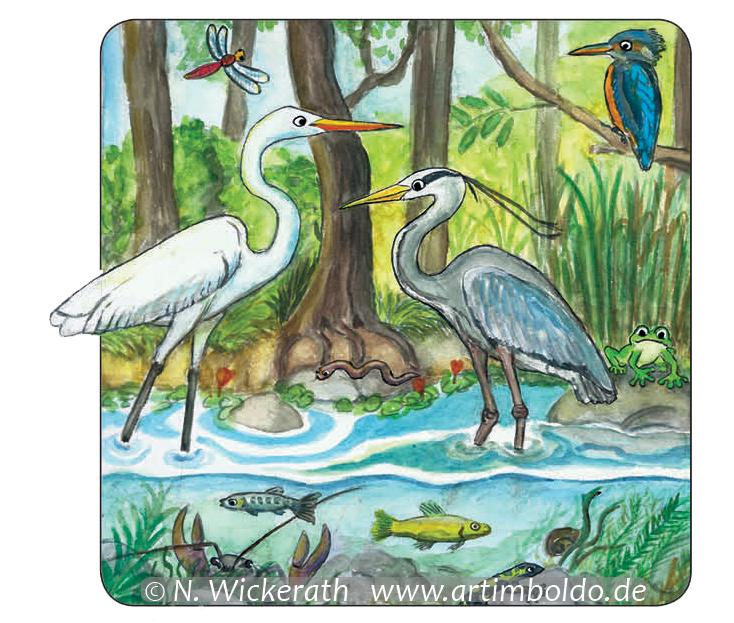 Artimboldo Wickerath Biberposter Fauna 2