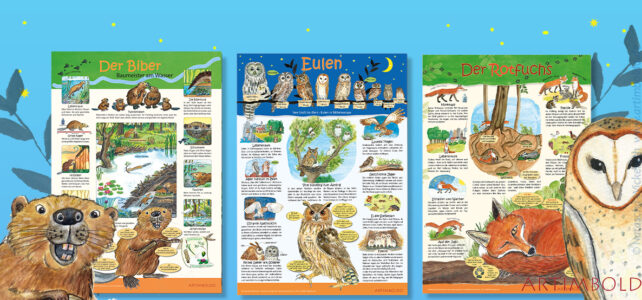 Der Biber – Tierposter für Schule, Kinderzimmer | Wissensposter Natur